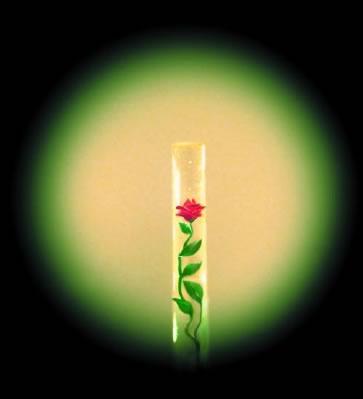музей микроминиатюры (роза в волосе)